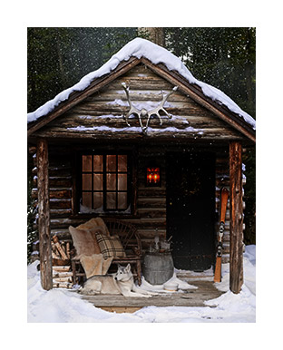 Snowy log cabin with dog on porch