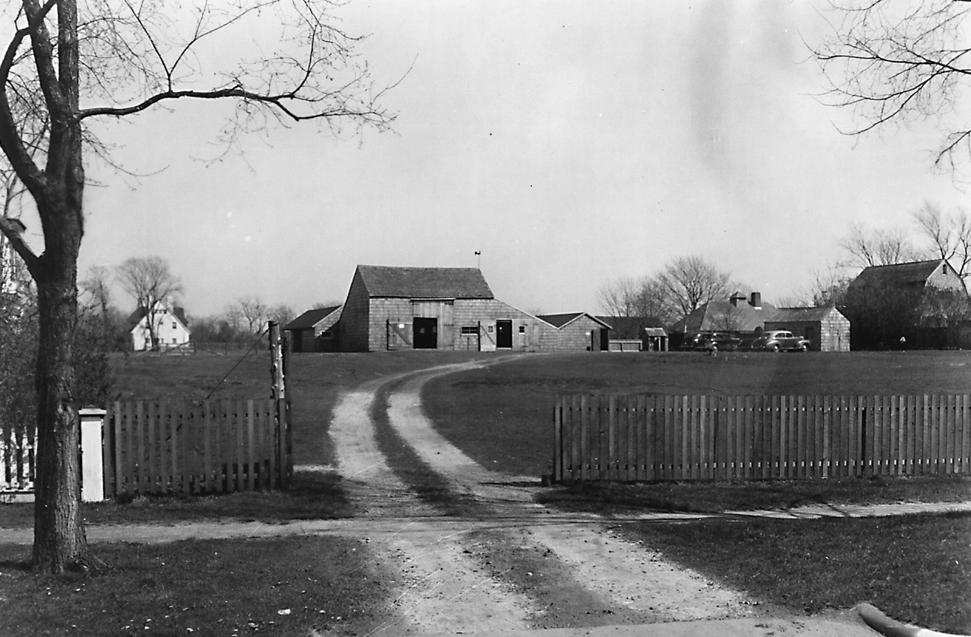 A view of the farm from James Lane in 1947