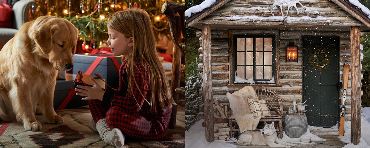 Girl gives wrapped gift to golden retriever; image of snowy log cabin