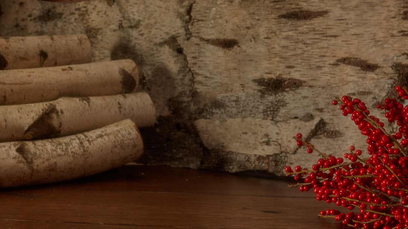 Festive image of cut logs and holly berries