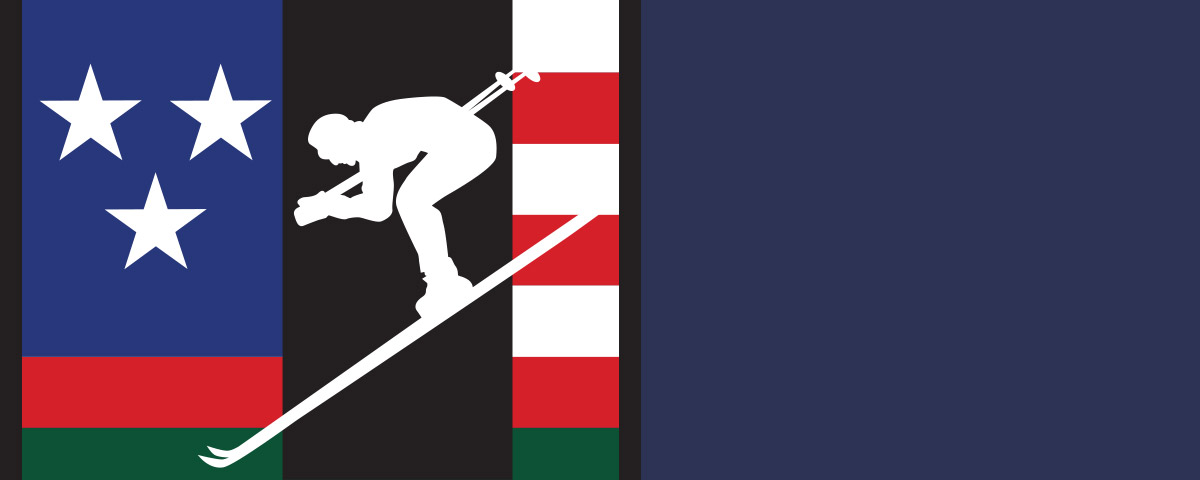 Downhill Skier graphic in bold colors.