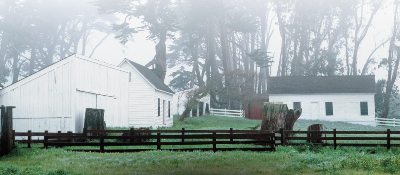 Photograph of white barn shrouded in mist
