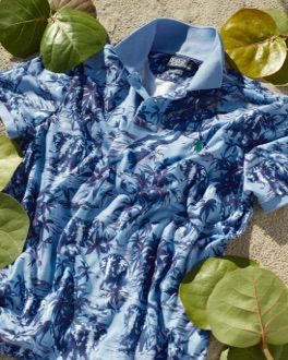 Blue Hawaiian-print Earth Polo